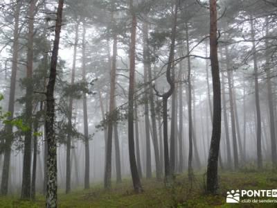 Lagunas de Neila;viajes trekking;grupo senderismo madrid;rutas y senderismo